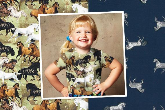 Tecidos para amantes de cavalos