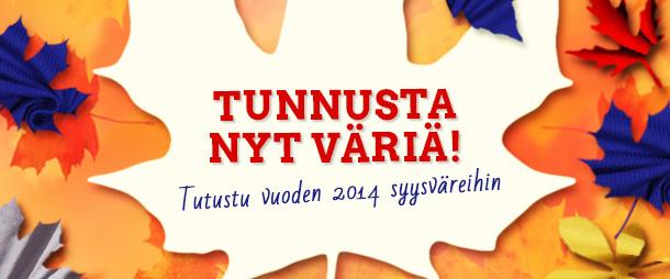 Sinappi, sininen, punainen, hopea ja musta - vuoden 2014 syysvärit!