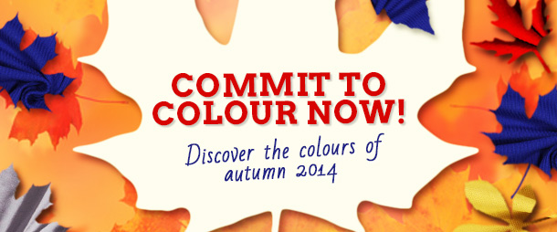 Mustard, blue, red, silver and black: these are the colours of autumn 2014!