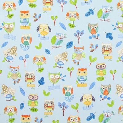 Ollie Owl 4
