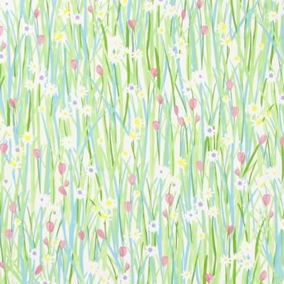 Spring Daisy 1