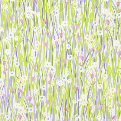 Spring Daisy 4