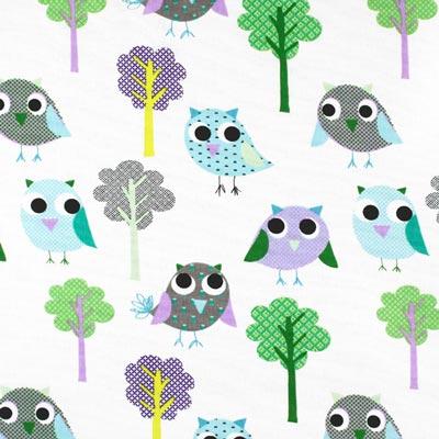 Owly 6