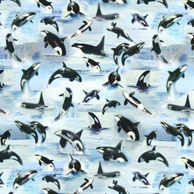 Single jersey Zwaardwalvis – lichtblauw
