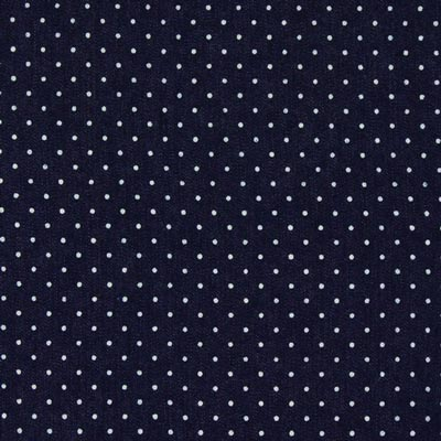 Denim Dots Small 2