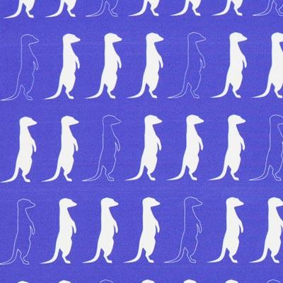 Popelina Suricatas – azul real