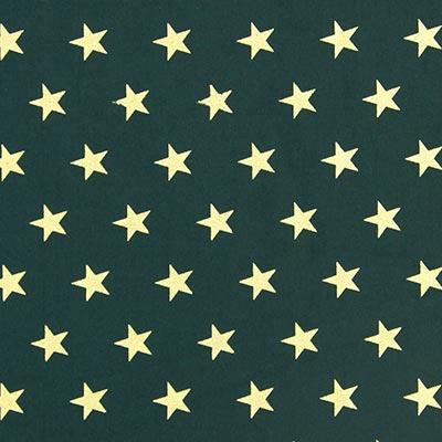 Navidad Estrella Grande 3
