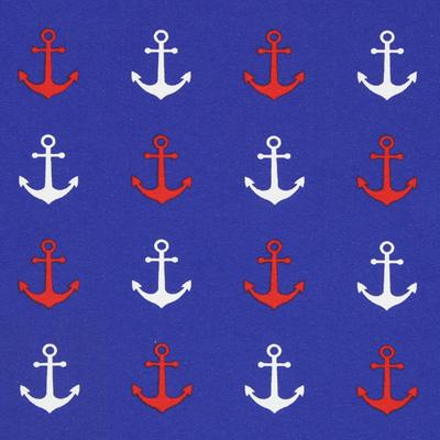 Jersey Ankerlinie 1