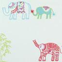 Taras Elefante indio 1
