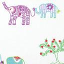 Taras Elefante indio 2