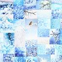 Mezzo panama Inverno – azzurro