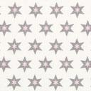 Long Island Star 1