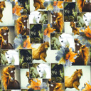 Cotton Horse Collage