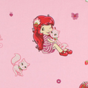 Strawberry Shortcake 2