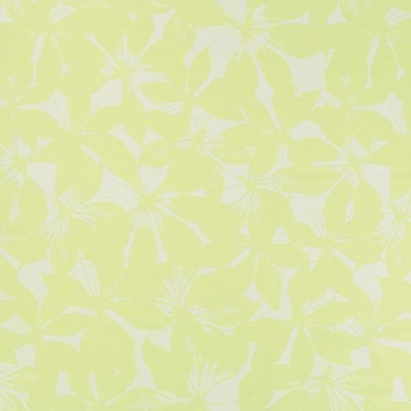 ESPRIT – Vivo 2 – Muster