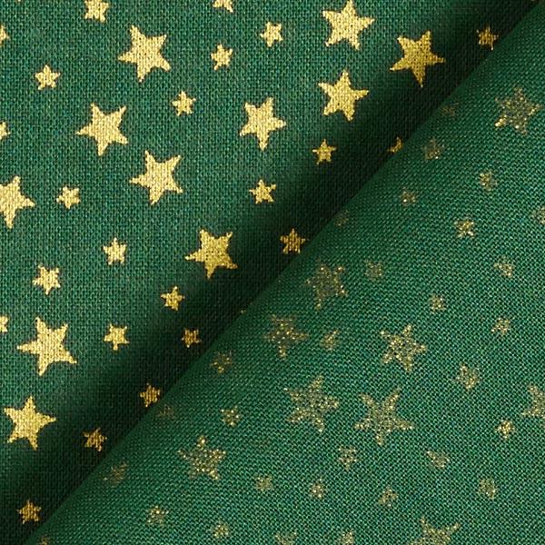 Tissu en coton Cretonne Ciel étoilé de Noël petit – vert foncé/or