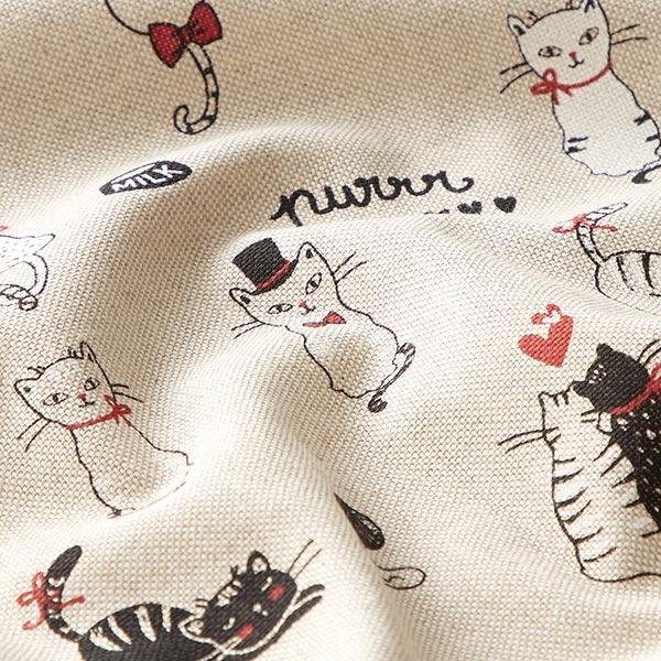 Semi-panama Aspect lin Cats in love – nature