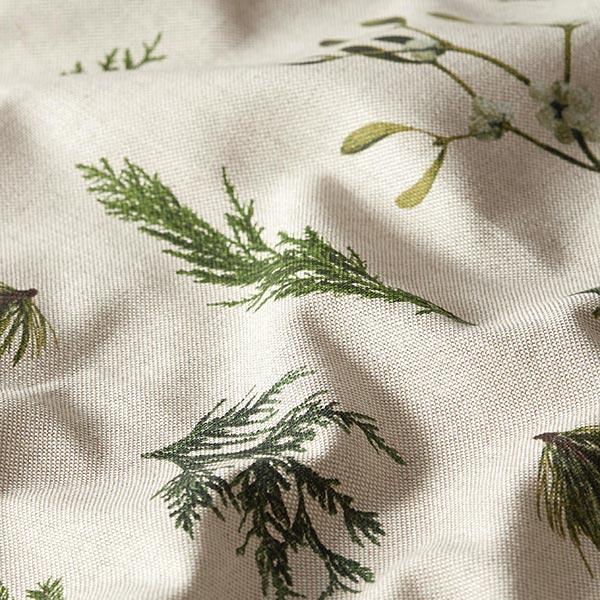 Semi-panama Branches de gui et de sapin – nature/vert