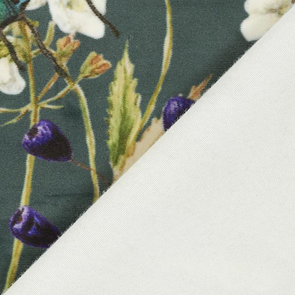 Tissu de décoration Imprimé numérique Paon – vert foncé
