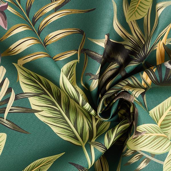 Tissu d'extérieur Singes capucin – vert