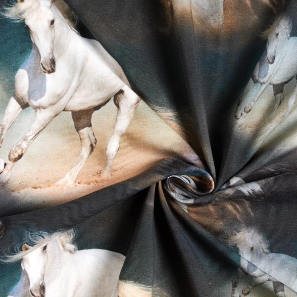 Jersey de coton bio Mustangs sauvages – navy