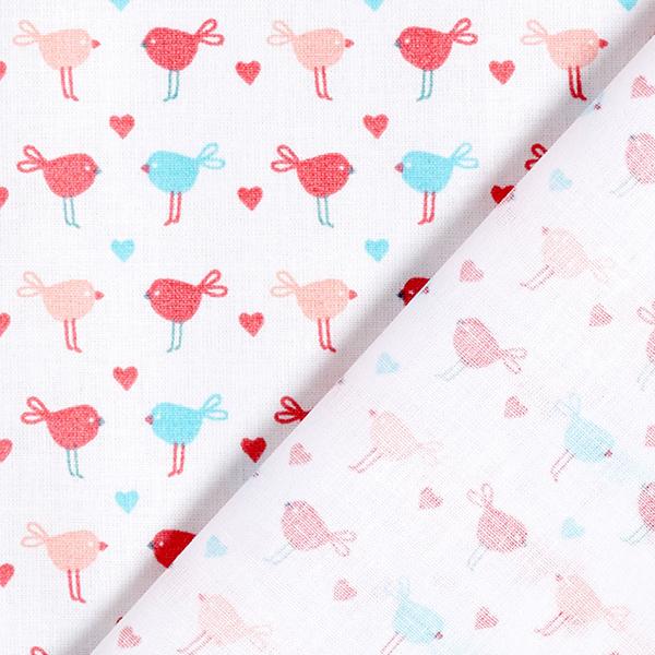 Tissu en coton Cretonne Oiseaux