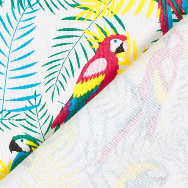 Jersey coton Perroquets – blanc/rouge vif