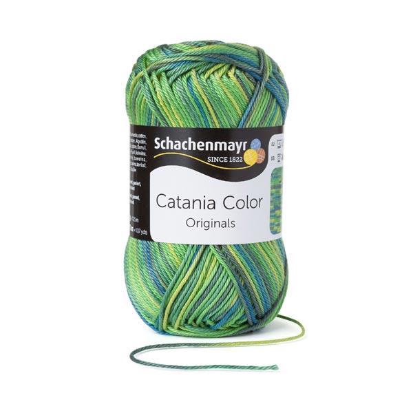 Catania Color [50 g] | Schachenmayr (0206)