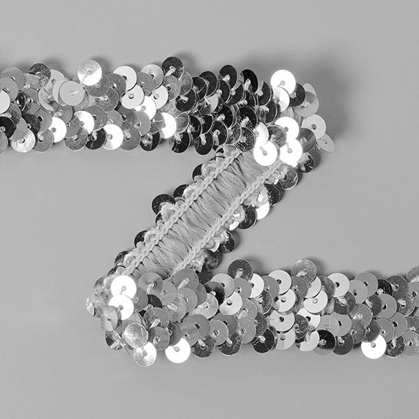 Galon pailleté élastique (20mm) 13 – argent