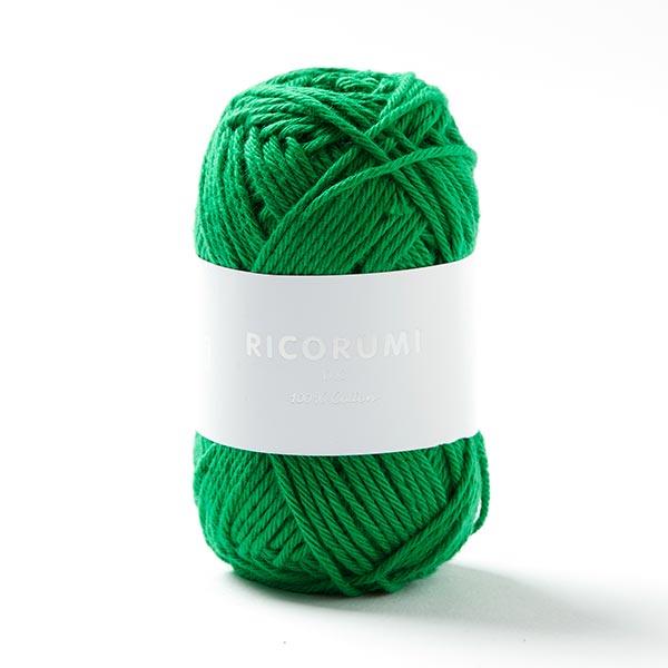 Creative RICORUMI DK | Rico Design (049)
