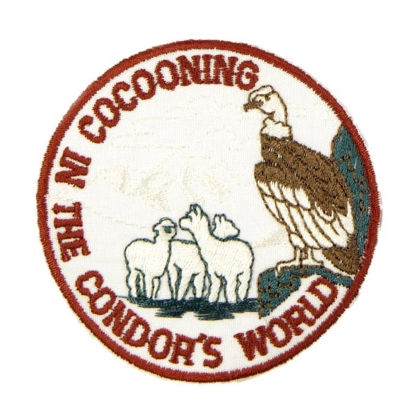 COCOONING IN THE CONDOR`S WORLD 1