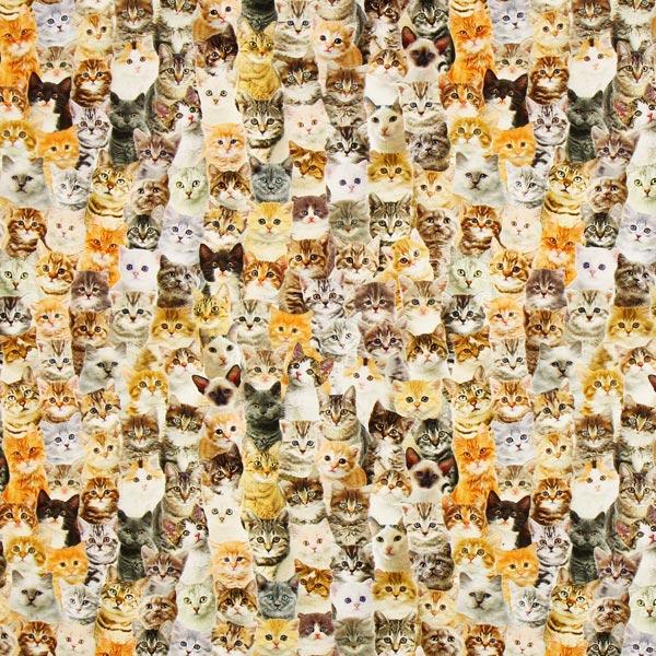 Halbpanama Kätzchen – beige