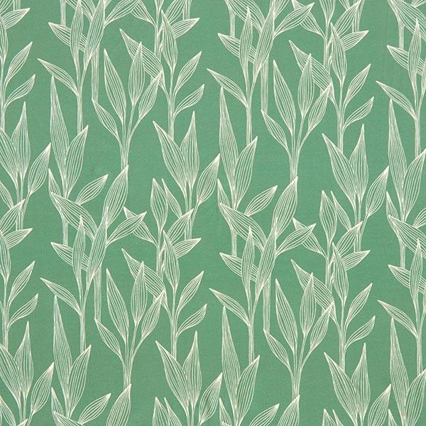 Jersey coton Roseau – vert