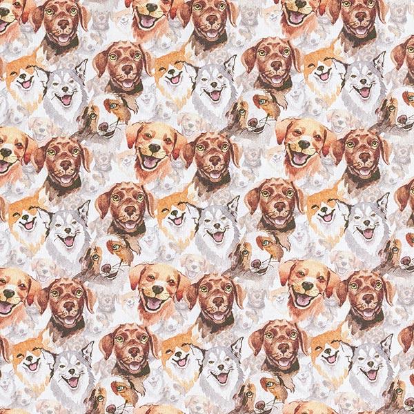 Dekostoff Baumwollpopeline Fröhliche Hunde – braun
