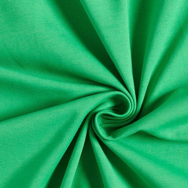 Baumwolljersey Medium Uni – grasgrün