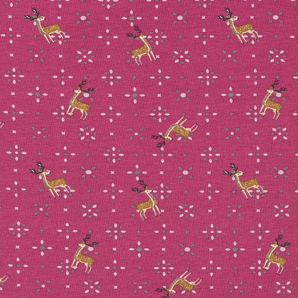 Jersey coton Etoile en amande et rennes – baies