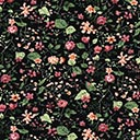 Cotton Flower Ermelo 1