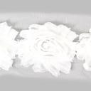 Encaje de flores 1