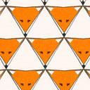 Jersey Fox Triangle 1