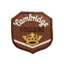 Cambridge College 5