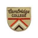 Cambridge College 8