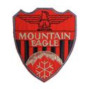 Mountain Eagle 2