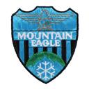 Mountain Eagle 4