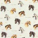 Konie 8