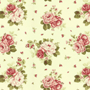 Country Rosa 6