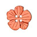 Botón de coco,  flor 3