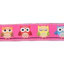 Cinta de tejer Owl 2