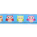 Cinta de tejer Owl 4
