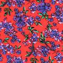 Batista Flores rojas