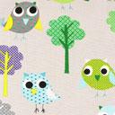 Owly 5